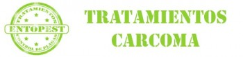 tratamientos CARCOMA banner VERDE