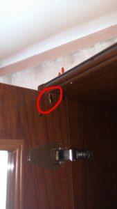 cucaracha alemana en mueble